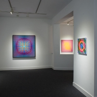 <strong>Victor Vasarely</strong> Optic Nerve Exhibition